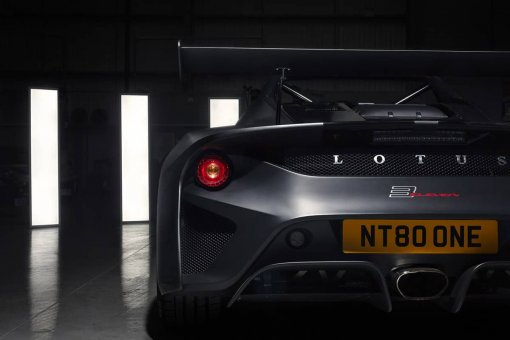 Lotus Back In Light Wallart